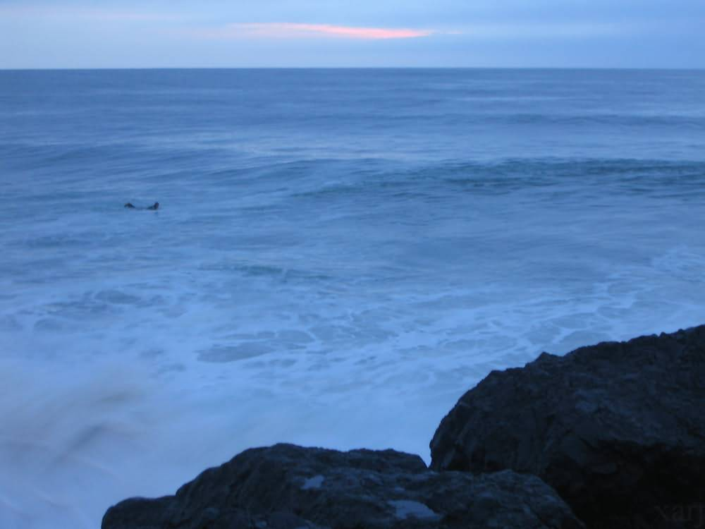 swell in Anglet