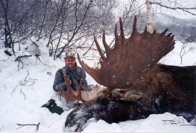 В сша убит гигантский медведь людоед