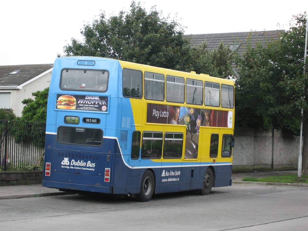 Double Bus Dublin