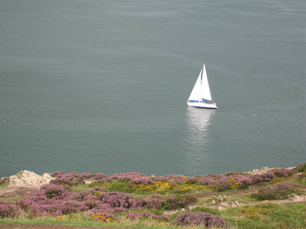 Boat in Howth