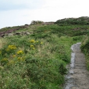 Path in Howth