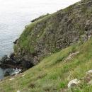 Cliffs Howth