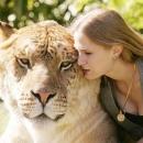 Lion Tiger Liger