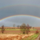 Rainbow Photos