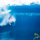 Surfer Wipes Out Big Surfing