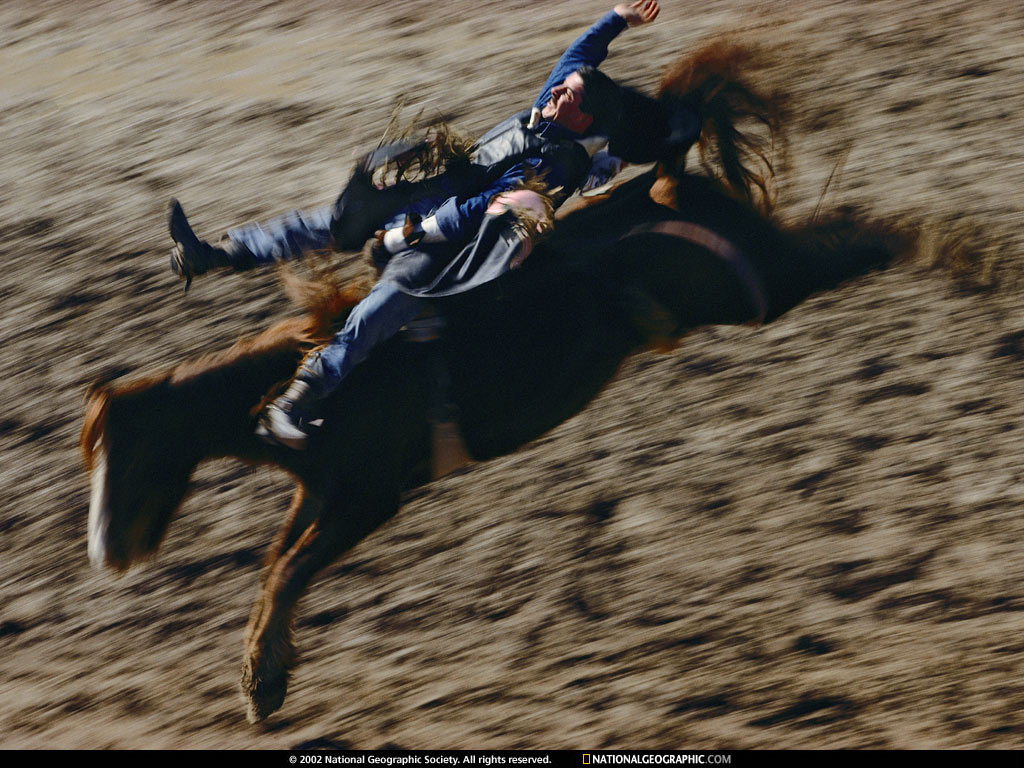 RODEO - National Geographic