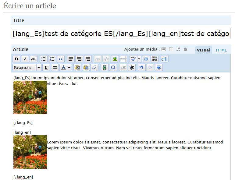 Polyglot WordPress Plugin
