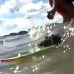 Surfing Mouse Video