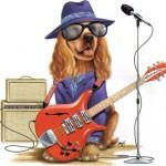 Total Guitar Music MP3