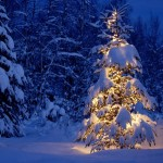 Smart Things To Do During The Christmas Holiday