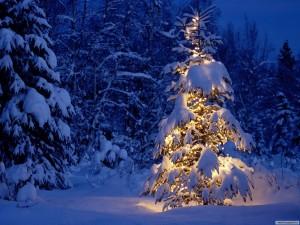 Merry-Christmas-christmas